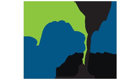 Chasing Fins Logo